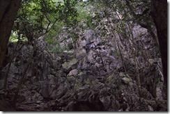 Chemin vers une des grottes prehistoriques