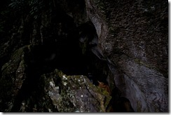 Une grotte dans le parc de Cuc Phuong