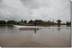 1476 - Bateau, Tour en bateau dans les marais, Environs Nam Can, Environs Ca Mau