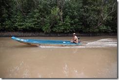 1497 - Bateau, Tour en bateau dans les marais, Environs Nam Can, Environs Ca Mau