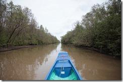 1499 - Vu du bateau, Tour en bateau dans les marais, Environs Nam Can, Environs Ca Mau