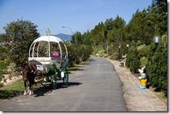 Le carosse de cendrillon au parc floral