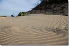 Les dunes autour de mui ne