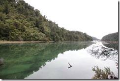 0304 - Randonnée, Abel Tasman National Park, Environs Motueka