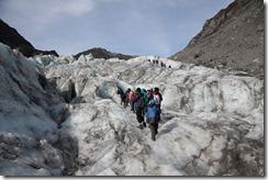0557 - Fox Glacier