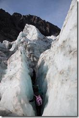 0564 - Fox Glacier