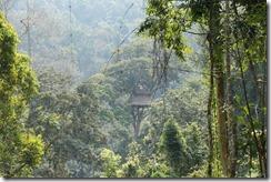 0291 - Houay Xai, Gibbon Experience, Treehouse 5, Vue extérieure