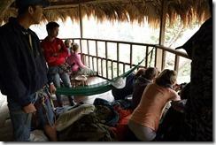 0308 - Houay Xai, Gibbon Experience, Treehouse 7, Recherche de gibbons